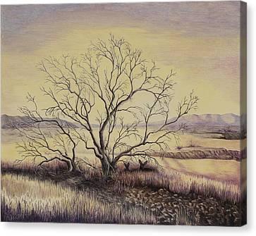 Prairie During The Dry Season Canvas Print by Gina Gahagan