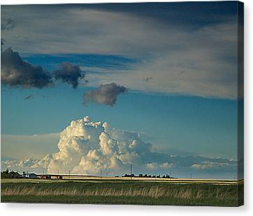 Clearing Canvas Print - Prairie Evening by Janet Ashworth