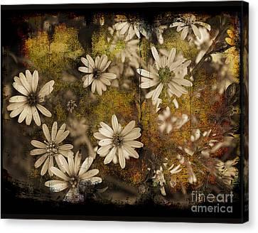 Prairie Flowers Canvas Print by Jim Wright