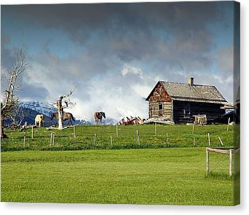 Abandoned Houses Canvas Print - Prairie Homestead by Janet Ashworth