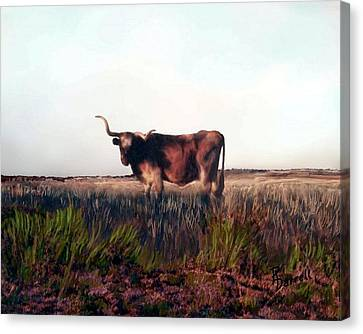 Prairie Longhorn Canvas Print