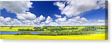 Prairie Panorama In Saskatchewan Canvas Print