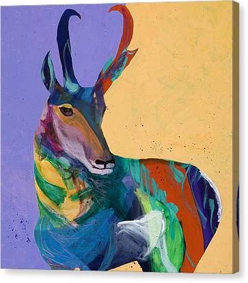 Pronghorn Antelope Canvas Print - Prairie Pronghorn by Tracy Miller