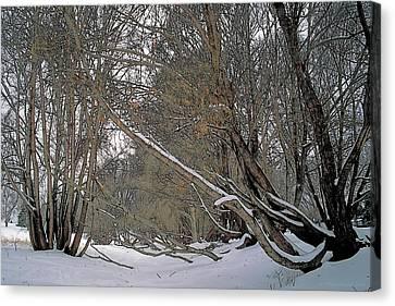 Prairie Winter 2 Canvas Print