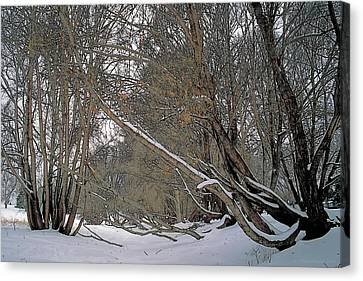 Fall Canvas Print - Prairie Winter 2 by Terry Reynoldson
