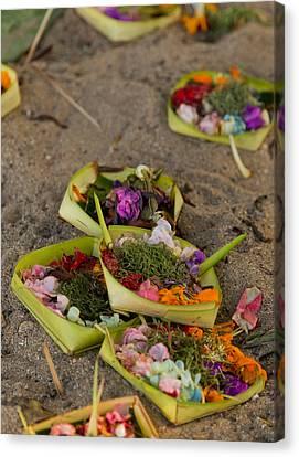 Prayer Offerings - Bali Canvas Print by Matthew Onheiber