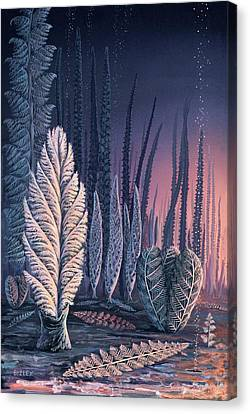 Pre-cambrian Life Forms Canvas Print