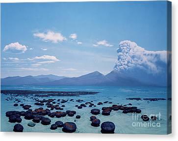 Precambrian Stromatolites Canvas Print by Chase Studio