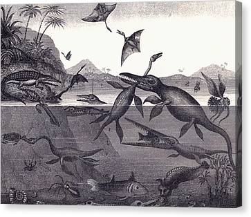 Prehistoric Animals Of The Lias Group Canvas Print by English School