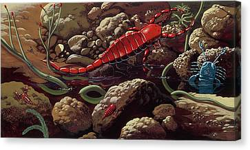 Prehistoric Crustaceans Canvas Print