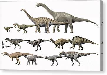 Prehistoric Era Dinosaurs Of Niger Canvas Print by Nobumichi Tamura