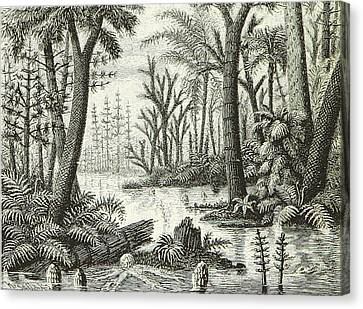 Canvas Print featuring the photograph Prehistoric Flora, Carboniferous by British Library