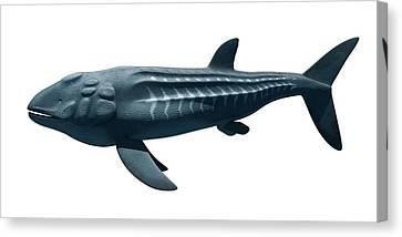 Prehistoric Sea Creature Canvas Print
