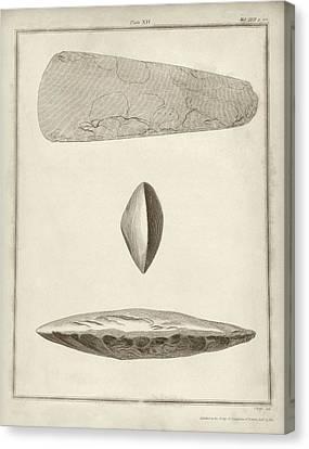 Prehistoric Stone Tools Canvas Print