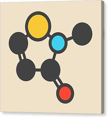 Preservative Molecule Canvas Print