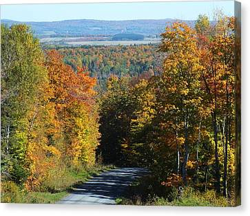 Presque Isle View Canvas Print by Gene Cyr
