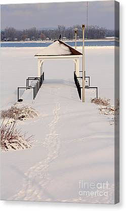 Presquile Provincial Park In Winter Canvas Print by Louise Heusinkveld