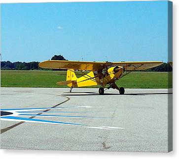 Preston Aviation Piper Cub  Canvas Print