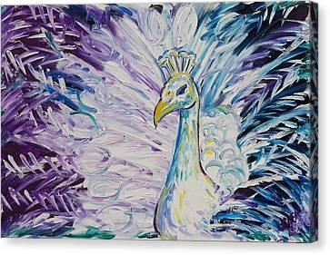 Pretty As A Peacock Canvas Print by Jessica Keith