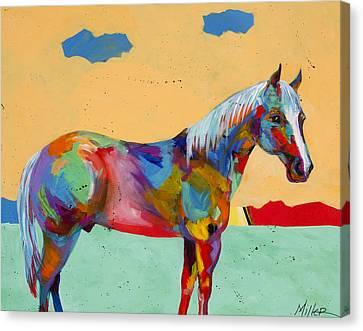 Pretty Boy Canvas Print by Tracy Miller