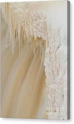 Pretty Alexandra Falls Canvas Print by Lisa Killins