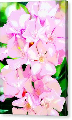 Pretty In Pink Canvas Print by Christina Ochsner