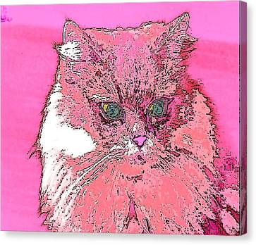 Pretty Kitty In Pink Canvas Print by Kathy Budd
