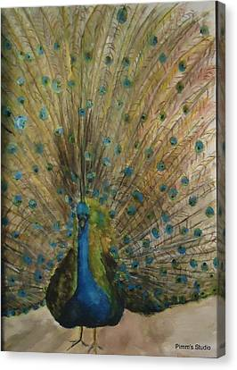 Pretty Plumage Canvas Print by Betty Pimm