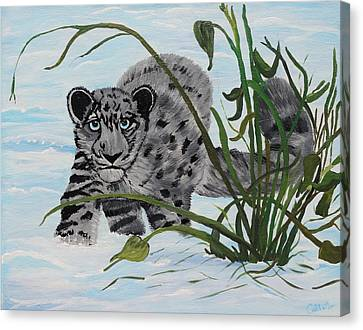 Preying In The Snow Canvas Print by Carol Hamby
