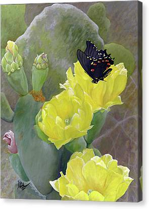Prickly Pear Flower Canvas Print by Adam Johnson