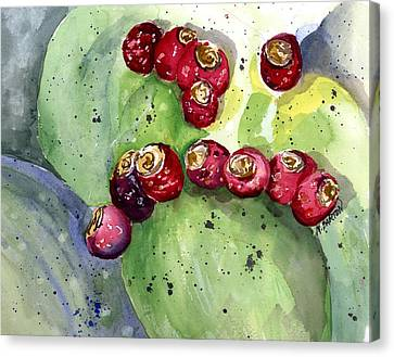 Canvas Print featuring the painting Prickly Pear Fruit by Marilyn Barton