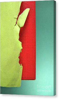 Primary Canvas Print by CML Brown