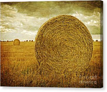 Bales Canvas Print - Prince Edward Island Pastoral Farm Fields by Edward Fielding