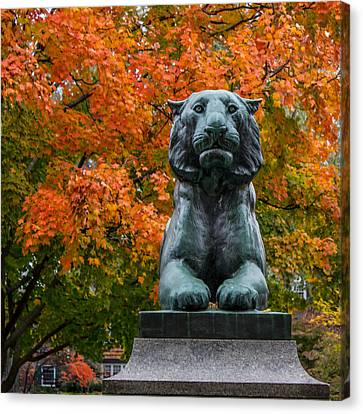 Princeton Panther Canvas Print