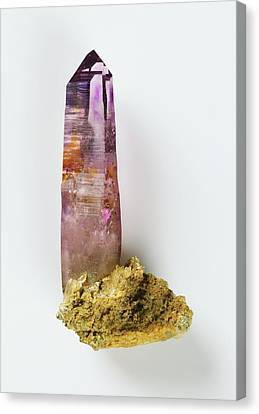 Prismatic Amethyst Crystal Canvas Print by Dorling Kindersley/uig