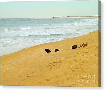 Private Beach Canvas Print