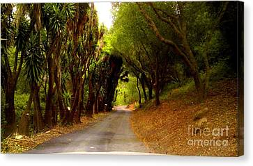Private Property Canvas Print by Sharon Costa
