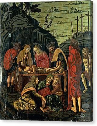 Probably Conti Bernardino De, Co-worker Canvas Print by Everett