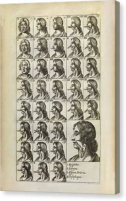 Production Of Vocal Sounds Canvas Print by Middle Temple Library
