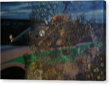 Profile In The Window. Canvas Print by Carol Brown