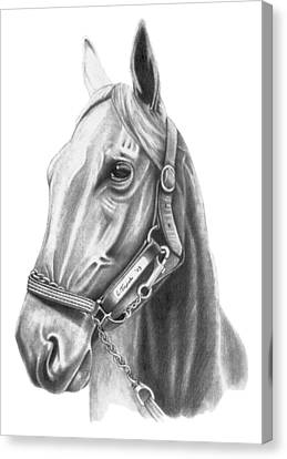 Profile Canvas Print by Lawrence Tripoli