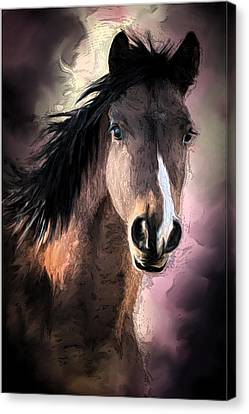 Profile Of A Horse Canvas Print by Ronel Broderick
