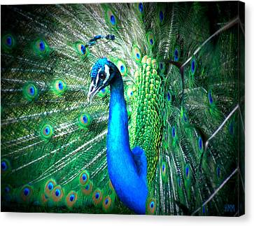 Canvas Print featuring the photograph Profile Of A Peacock  by Heidi Manly