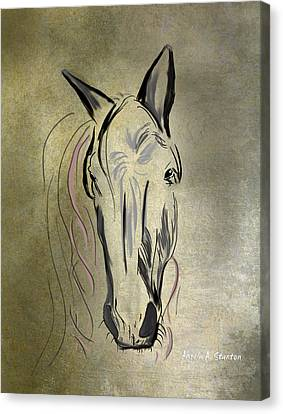 Profile Of A White Horse Canvas Print by Angela A Stanton