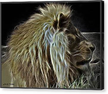 Profile Portrait Of A Glowing Lion Canvas Print by Jon Volden