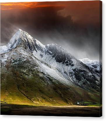 Profound Beauty Canvas Print by Ian David Soar
