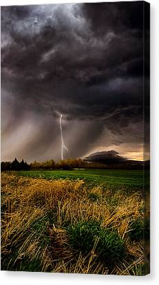 Profound Canvas Print by Phil Koch