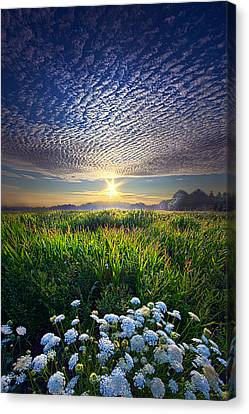 Promise Fulfilled Canvas Print by Phil Koch