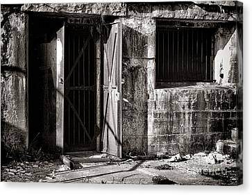 Protected Canvas Print by Olivier Le Queinec