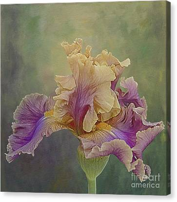 Canvas Print featuring the photograph Proud Iris by Vicki DeVico